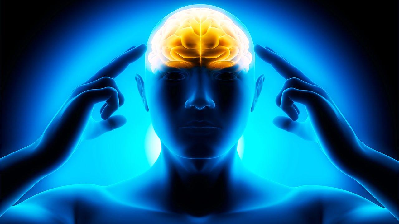 چرا دنیای مدرن برای مغزمان مضر است؟