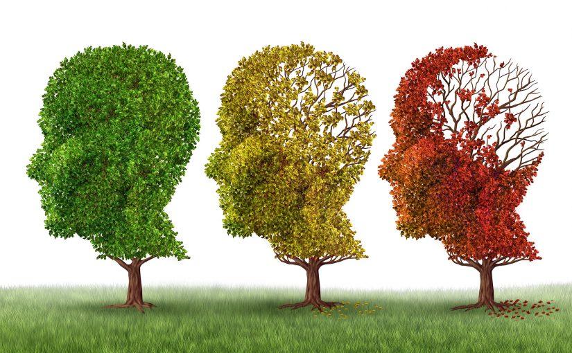 درخشش ابدی یک ذهن پاک؛ دانشمندان میگویند پاک کردن حافظه ممکن است